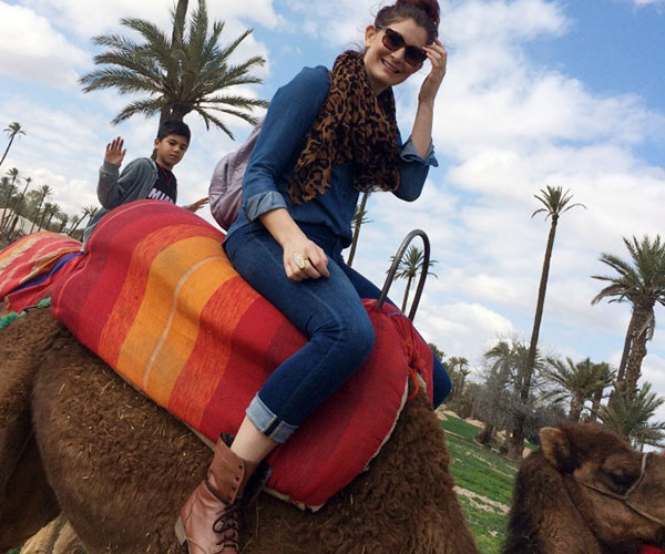 camelos-e-lamas-01