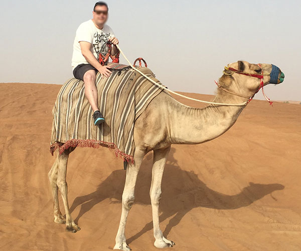 camelos-e-lamas-03